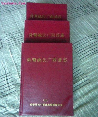 舜裔姚氏广西家族的特征概况,姚氏宗亲网