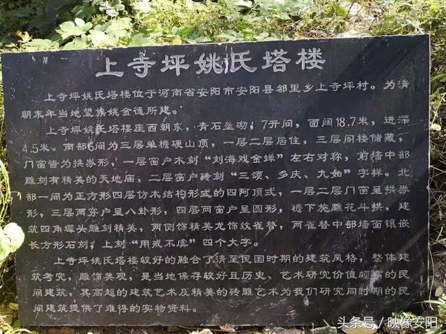河南安阳姚氏塔楼 清末民居 漳河湿地公园里的瑰宝(姚网)